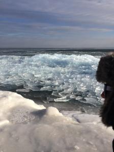 ice panes